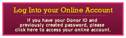 Log Into Your Online Account